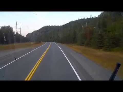Thumbnail: Aug 14 2015 DVR 2 080 Cougar sighting
