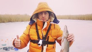 Зимняя рыбалка на 21 жерлицу и фигушки ловля окуня на мормышку банан рулит