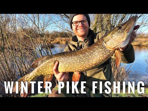 UK River Pike Fishing - Winter Lure Angling