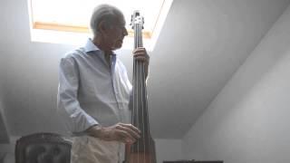 ns design nxt 4 string double bass autumn leaves samba