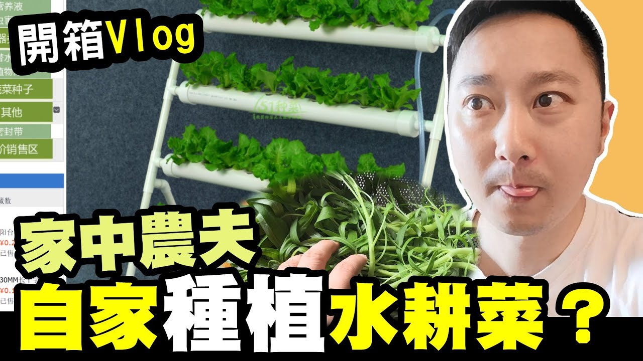 淘寶$128元水耕系統//究竟掂唔掂?//水耕種植//淘寶開箱片//Vlog - YouTube