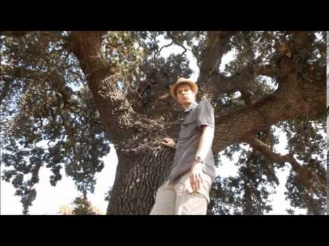 California's Riparian Wild