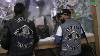 В город Ош прибыли 40 байкеров из стран Центральной Азии / Видео