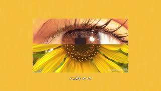 Akhian Nu Rehn De - Qurat-ul-Ain Balouch   Aesthetics اردو