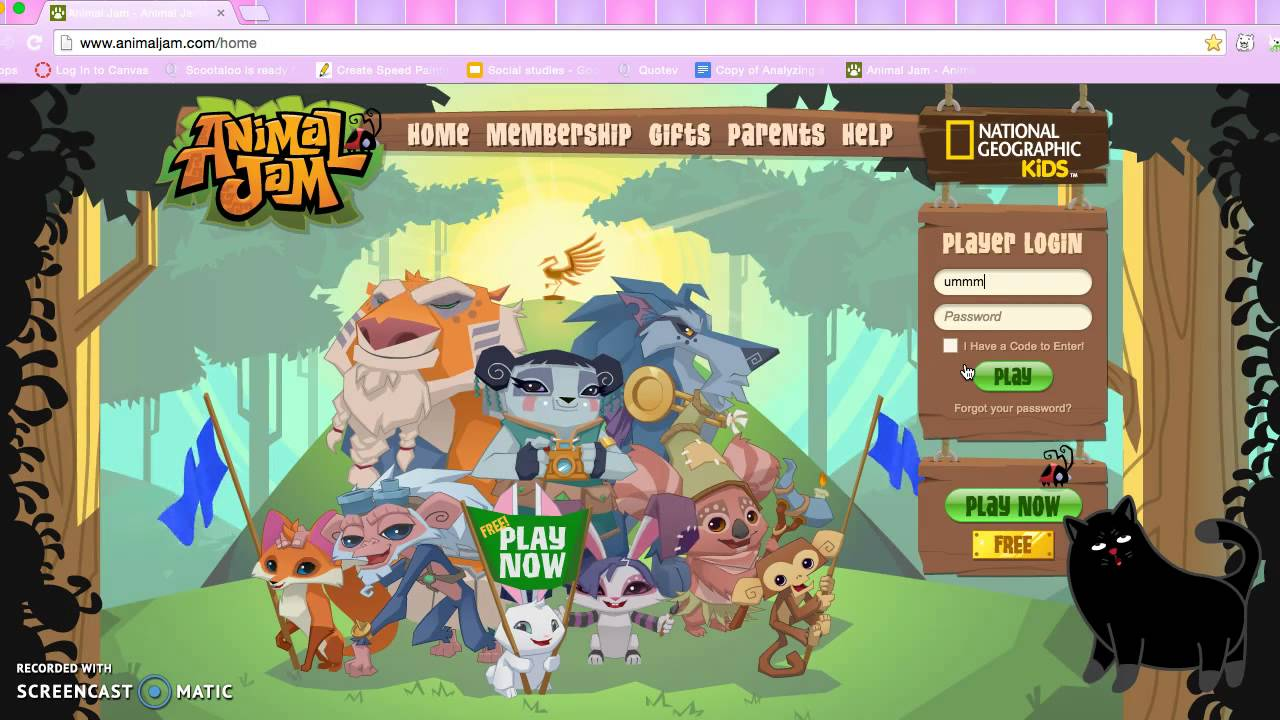 Passwords for animal jam