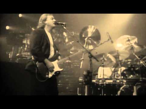 Pink Floyd - Wish you were here - Delicate sound of thunder