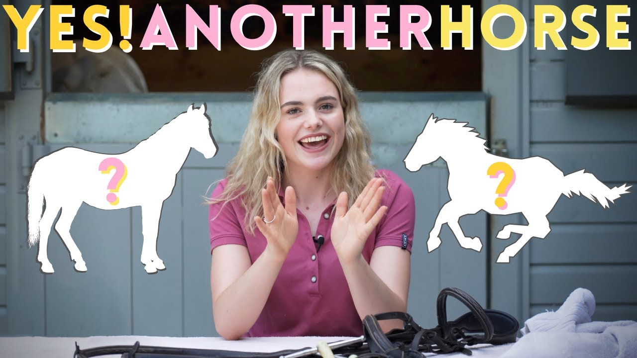Download Yes! I am Getting Another Horse!! + QnA AD | This Esme