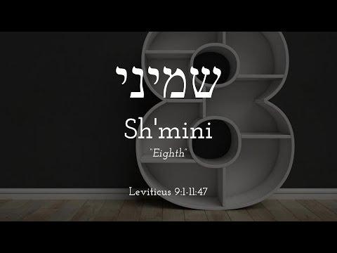 Shemini - Free Biblical Hebrew Lessons, Learn Trope