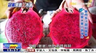 這個滋味好「火紅」 甜如蜂蜜行銷海外《海峽拚經濟》 @東森新聞 CH51