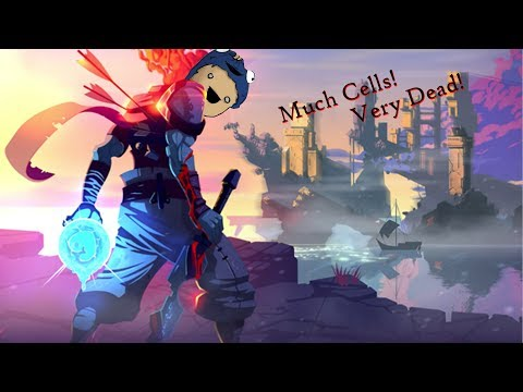 We're back in action! (deadcells)