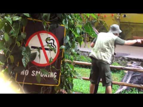 20122015 Animal Show Taman Safari Cisarua Bogor