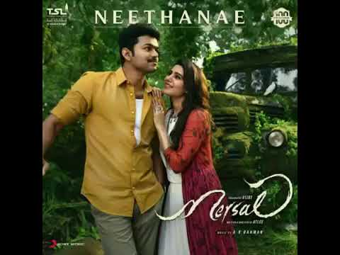 Merasal Song Neethaney, Neethaney A Song By AR,Merasal Latest Song Neethaney By AR