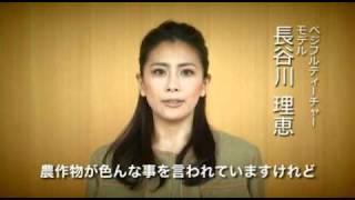 ベジフルティーチャー長谷川理恵さんコメント