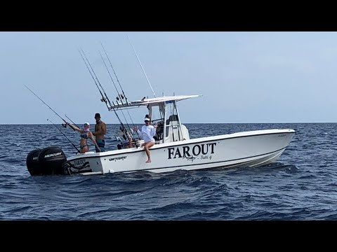 BANANAS on a FISHING trip??!