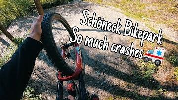 ☀️Schöneck Bikepark IST MEGA! SO MUCH CRASHES!🚑