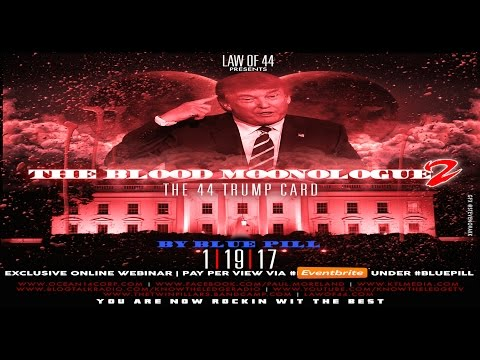 Red and Blue Pill-  The Cosmic Law of 44, Aquarian Energy, and MLK's Legacy
