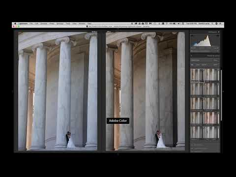 How to Create Color Profiles With Adobe Camera Raw with Dustin Lucas