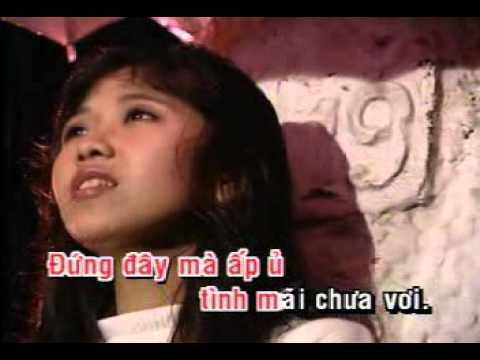 vietnamese karaoke songs music library demo