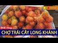 Chợ trái cây Long Khánh | Viet Nam Life and Travel | BKB CHANNEL