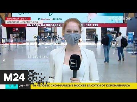 Сколько стоят авиабилеты на российские курорты - Москва 24