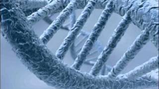 Blackfield - DNA