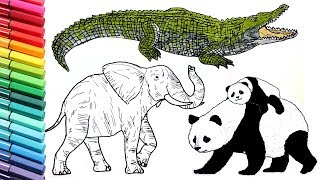 Garden Animals Coloring Pages : Farm animals coloring pages learning animal name and sound for