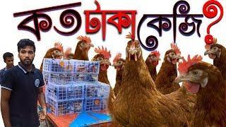 দেশি মুরগি কত টাকা কেজি বিক্রি করা যাই ? dasi murgi palon