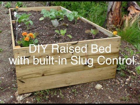 Diy Raised Bed Garden With Built In Slug Control Youtube