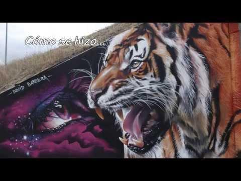 Timelapse ojo y tigre David Barrera