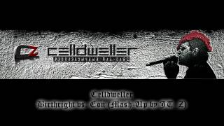 Celldweller - Birthright vs. Eon (Mash-Up by JT_Z)