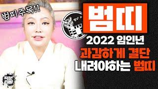 2022년 임인년 범띠 호랑이띠 운세 과감하게 결단을 내리면 이익이 돌아온다? 경인생 무인생 병인생 갑인생 …
