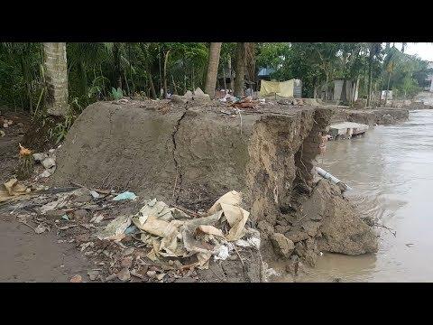 নড়িয়া তীব্র পদ্মা নদী ভাঙ্গন মুলফতগঞ্জ সর্বশেষ আপডেট Shariatpur Padma River Erosion