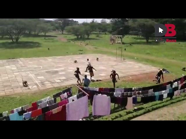 Monkeys Chasing Students in Multimedia University of Kenya