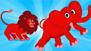 My Magic Circus Animal Morphle! Lions, Elephants, Tigers and Monkeys for children.