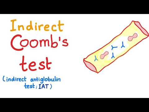 Indirect Coombs Test