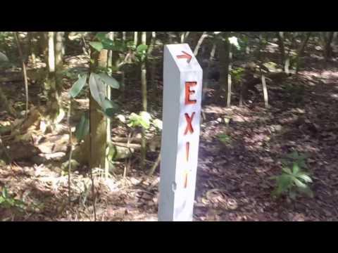 Hiking trails at Matheson Hammock park