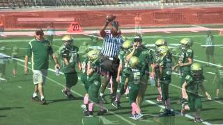 Mighty Mites Gold vs Green 2012 part1.mp4