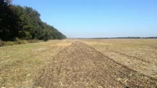 NO TILL, Как мы сеяли пшеницу 2012