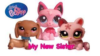 My New Sister Teaser Thumbnail