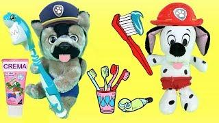 Juguetes paw patrol español: bebes aprender a lavarse los dientes con regalo de patrulla canina