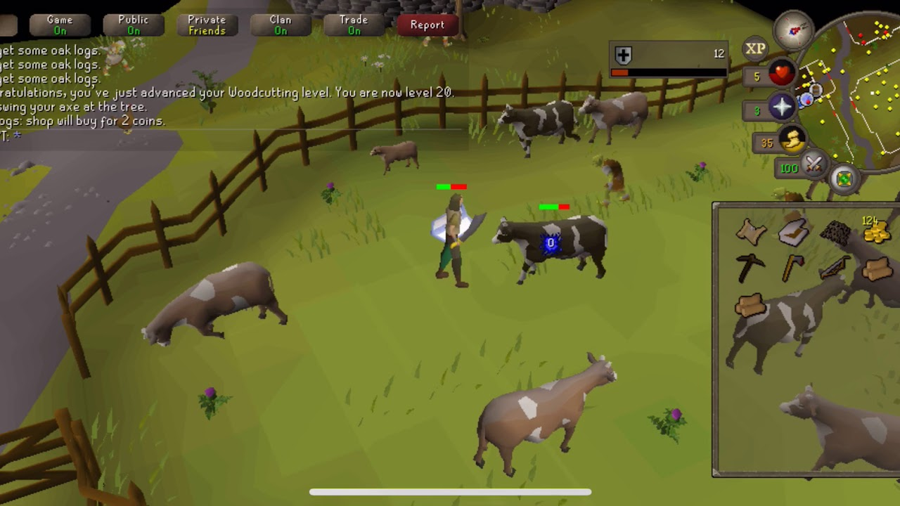Old School Runescape Mobile 2019 (OSRS iOS) - Gameplay No Commentary -  Killing Cows!