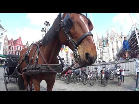 Netherlands and Belgium Eurotrip (2016)