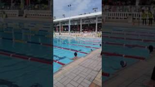 賽馬會官立中學 週年水運會 100米自由式 公開組 黑帽藍衫
