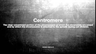 Medical vocabulary: What does Centromere mean