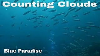 Counting Clouds - Blue Paradise