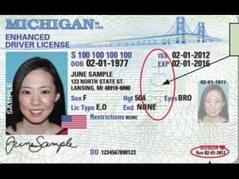 Licencia de Conducción para Inmigrantes de Michigan (Driver License for immigrants in Michigan)