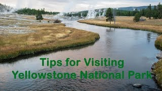 12 Tips for Visiting Yellowstone National Park