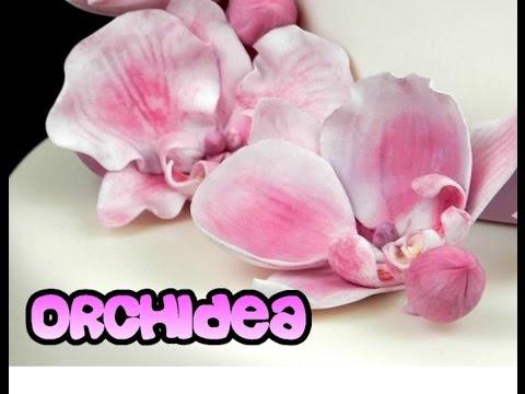 Download Orchidea in pasta di zucchero senza stampini