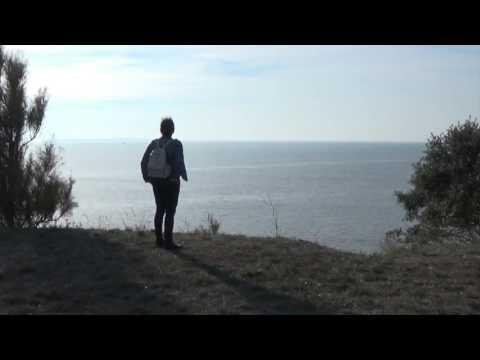 Alan Walker & Kygo - Sky High ( New Song 2016 )