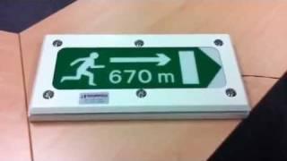 Slimline LED Fire Exit Sign